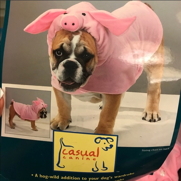 Pig dog costume ?? : pig dog costume  - Germanpascual.Com